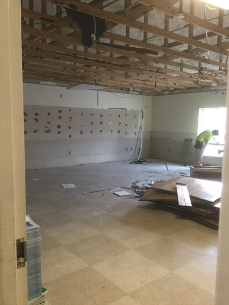 Summer 2019 Renovation Progression